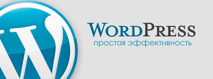 Заказать сайт, в Киевской веб студии Reaktiv WordPress